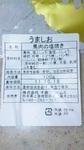 DVC00263.jpg